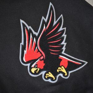 falcon-college-mascot